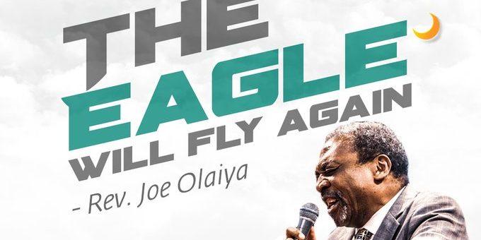 Joe-Olaiya-The-Eagle-Will-Fly-Again